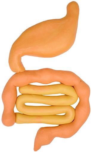 大腸がんについて